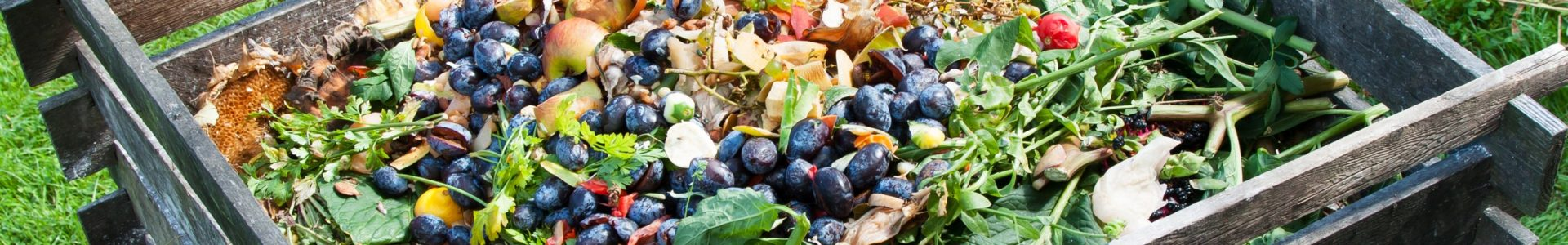 The dos and don'ts of composting
