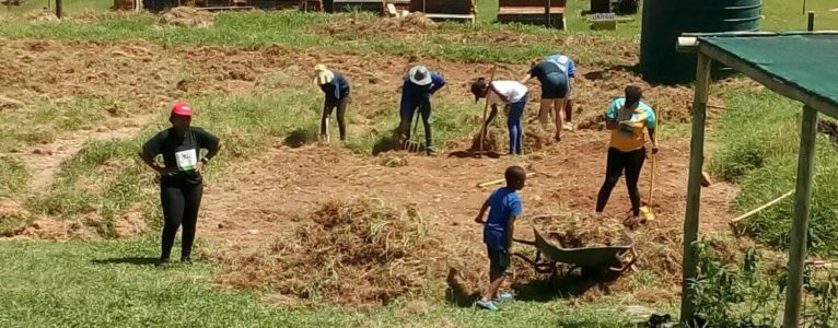 30 Volunteers get their hands dirty at the Mbabane Urban Garden